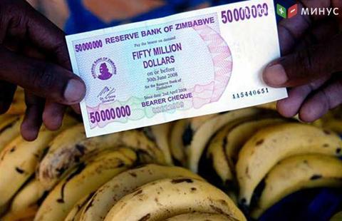 ВЗимбабве введут вобращение суррогатные деньги