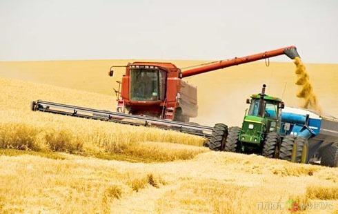 В Приамурье наивысший показатель средней урожайности ранних зерновых за всю историю растениеводства